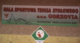 GKS MojeBermudy.pl Gorzovia Gorzów - Energa KTS Toruń 03.02.2018r., godz. 16