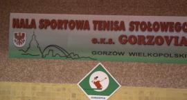 Gorzovia wykorzystała atut własnej hali