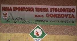 Zwycięstwo Gorzovii na inaugurację