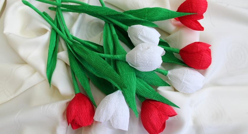 Informacje  z Wolanowa i okolic, Naucz wykonywać kwiaty bibuły - zdjęcie, fotografia