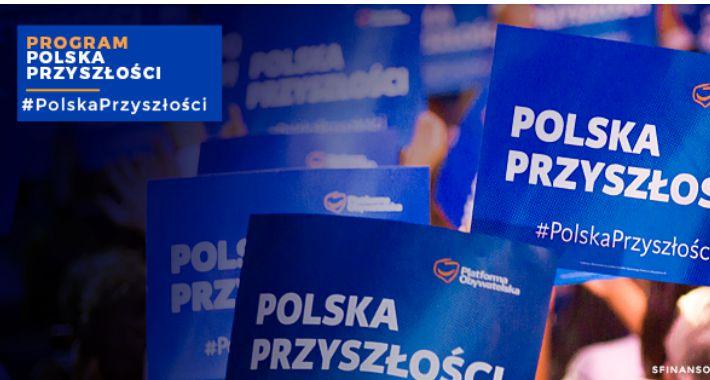 Polityka, pewno plebiscyt obietnic wyborczych głupiemu radość - zdjęcie, fotografia
