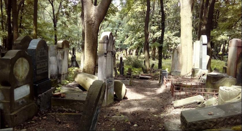 Religia - kościoły - święta, Wolontariusze porządkują zabytkowy Cmentarz Żydowski - zdjęcie, fotografia