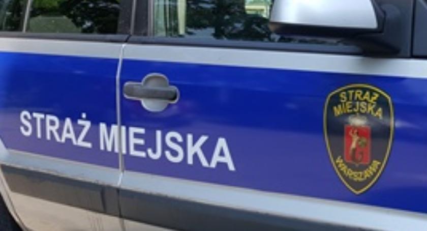 Bezpieczeństwo, nowych radiowozów straży miejskiej - zdjęcie, fotografia