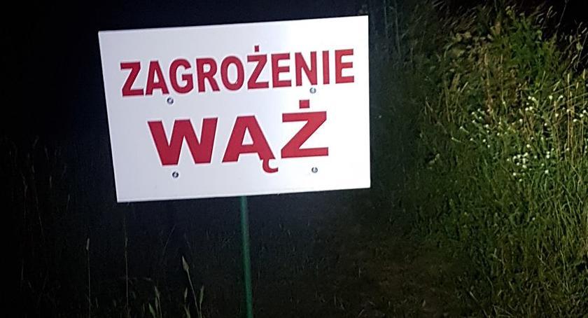 Zwierzęta, Kolejny dzień poszukiwań wielkiego węża gminie Karczew [ZDJĘCIA] - zdjęcie, fotografia