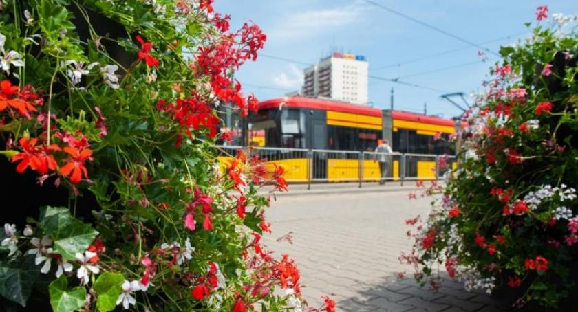 Transport publiczny - komunikacja, Kwiatowe kompozycje pętlach - zdjęcie, fotografia