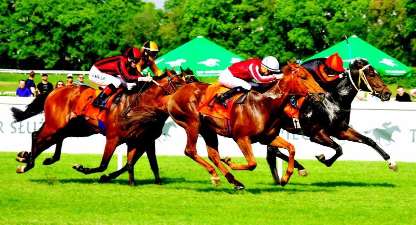 Sport, Wielkie gonitwa Nagrodę Rulera [ZDJĘCIA] - zdjęcie, fotografia