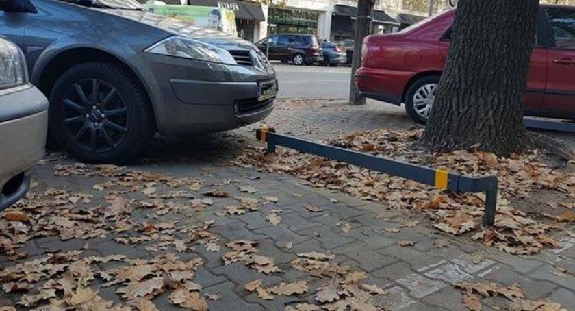 Zieleń - parki, pomysły ochronę zieleni przed rozjeżdżaniem Zdadzą egzamin - zdjęcie, fotografia