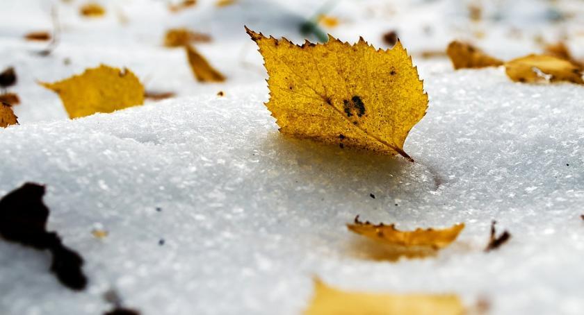 Prognoza pogody, Koniec złotej polskiej jesieni zmieniać opony samochodach - zdjęcie, fotografia