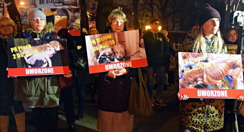 Protesty i manifestacje, Protest obronie zwierząt [ZDJĘCIA] - zdjęcie, fotografia
