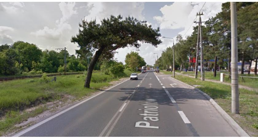 Zieleń - parki, uratować pochyłą sosnę Wawrze - zdjęcie, fotografia