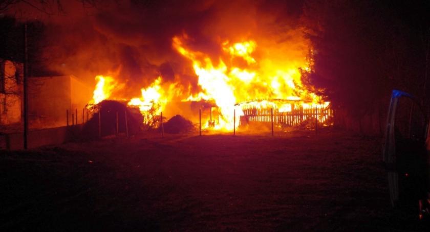 Pożary, Spłonęły kolejne pustostany - zdjęcie, fotografia