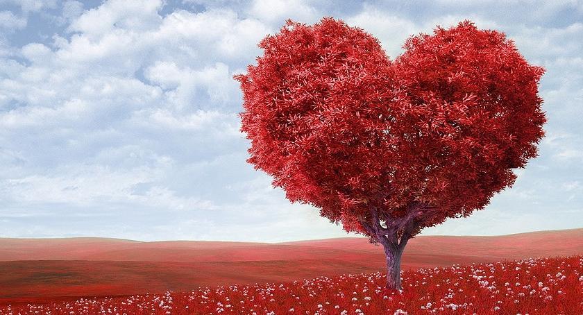 NEWS, Walenty patron zakochanych chorych psychicznie - zdjęcie, fotografia