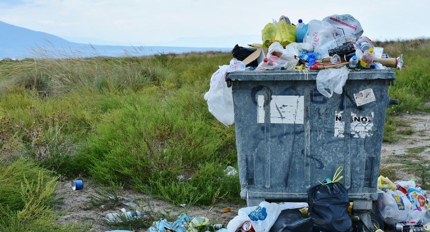 NEWS, Warszawskie trendy waste - zdjęcie, fotografia