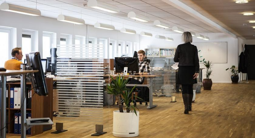 Handel i usługi, zwrócić uwagę wynajmie biura - zdjęcie, fotografia