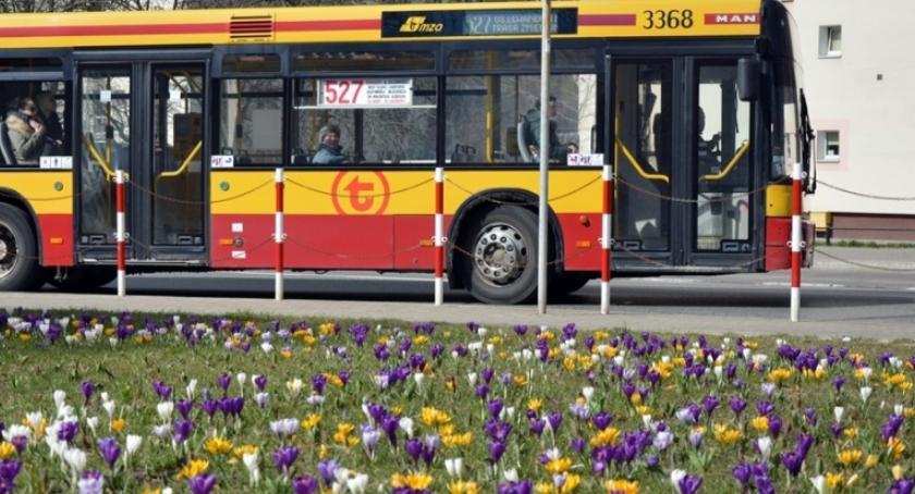 Zieleń - parki, Sezonowe kwiaty pętlach komunikacyjnych - zdjęcie, fotografia