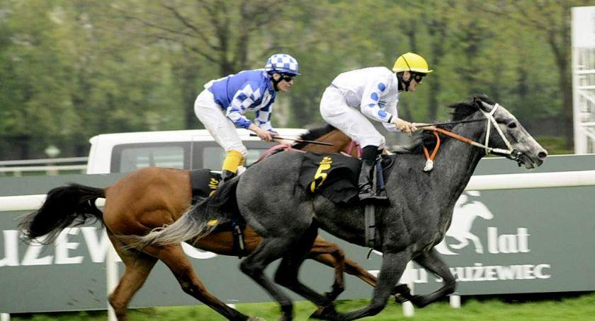 Sport, Inauguracja sezonu wyścigów konnych Służewcu [ZDJĘCIA] - zdjęcie, fotografia