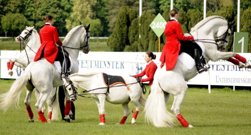 Sport, Wyścigów Konnych Służewcu - zdjęcie, fotografia