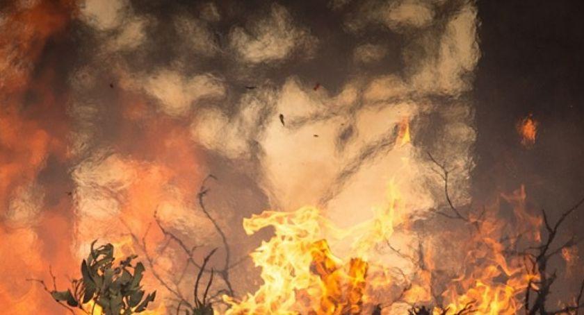 Pożary, spłonęła ciężarówka - zdjęcie, fotografia