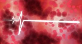 Łączy nas krew: Dzielmy się człowieczeństwem. Niedługo akcja krwiodawstwa!