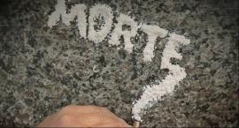 Straż Graniczna zatrzymała przemytnika narkotyków. Przewoził 12,5 kg kokainy.