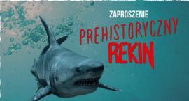 W ZOO zawitał prehistoryczny rekin. Prawdziwy gigant!