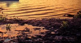 Wyłowiono zwłoki z Jeziora Lisowskiego
