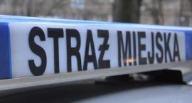 Uwaga! W weekend trudniejszy kontakt ze strażą miejską!