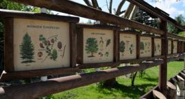 Centrum Edukacji Ekologicznej w przyszłym roku w Lesie Młocińskim