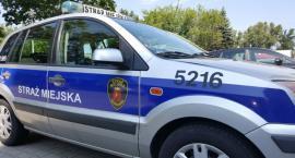 Furiat z metalowym prętem zaatakował strażniczki miejskie