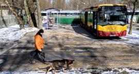 Modernizacja schroniska Na Paluchu - oddział geriatryczny, dużo zieleni i...autobus