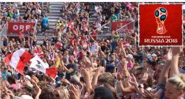 Powstaną dzielnicowe strefy kibica podczas mistrzostw świata w Rosji