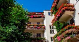 Warszawa w kwiatach - zgłaszajcie balkony, tarasy, ogródki do konkursu