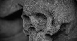 Dziecko znalazło fragment czaszki w czasie spaceru