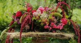 XIV Festiwal Róż w Ogrodzie Botanicznym UW [ZDJĘCIA]