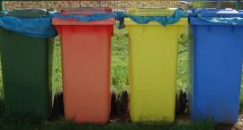 Jak segregować śmieci od nowego roku - mini poradnik