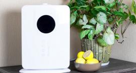 Nawilżanie powietrza w domu – dlaczego warto to robić?