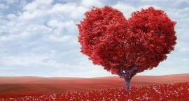Św. Walenty - patron zakochanych i chorych psychicznie