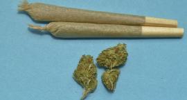 Miał przy sobie Nowy Testament, a w nim... marihuanę