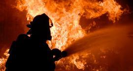 W Wołominie spłonęła hala.