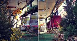 Dzisiaj możemy przejechać się zielonym tramwajem Las