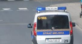Rowerzystka ugryzła strażnika miejskiego