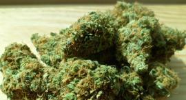 """Małolata z """"e-marihuaną"""" zatrzymana na Ursynowie"""