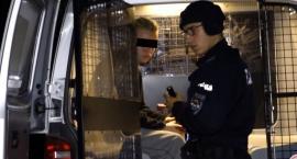 15-latek zastrzelił trzy szczeniaki