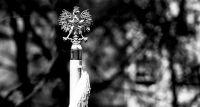 11 Listopada - Święto Niepodległości. Ilu rodaków oddało życie za wolność?