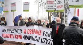 W obronie państwowych stadnin koni arabskich. Manifestacja w Warszawie [ZDJĘCIA]