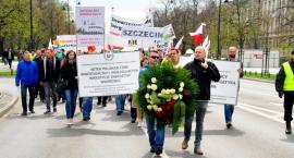 Manifestacja w obronie energii z wiatru [ZDJĘCIA]