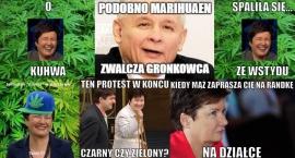 Wysyp memów po znalezieniu plantacji marihuany na działce męża Hanny Gronkiewicz-Waltz