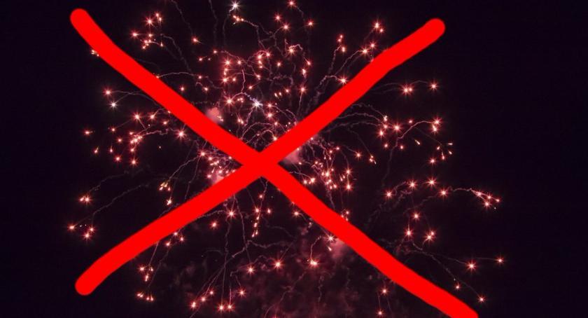 Prawo, Dość strzelania fajerwerków! - zdjęcie, fotografia
