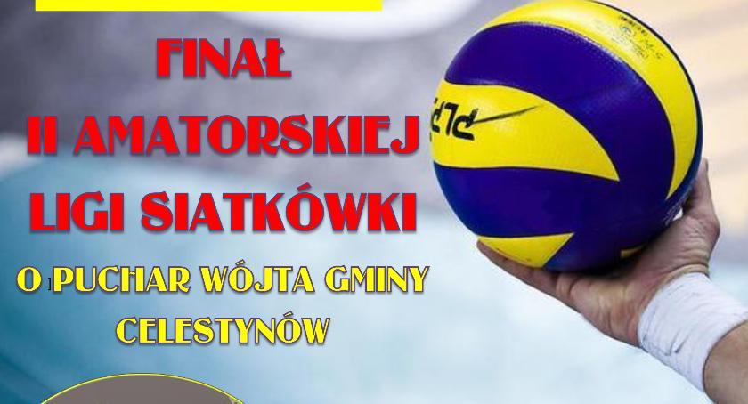 Piłka siatkowa, Finał Amatorskiej Siatkówki Celestynowie - zdjęcie, fotografia
