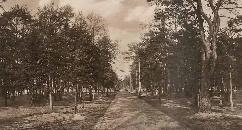 Historia, Gdzie dawniej szumiał znakomita przeszłość Śródborowa - zdjęcie, fotografia